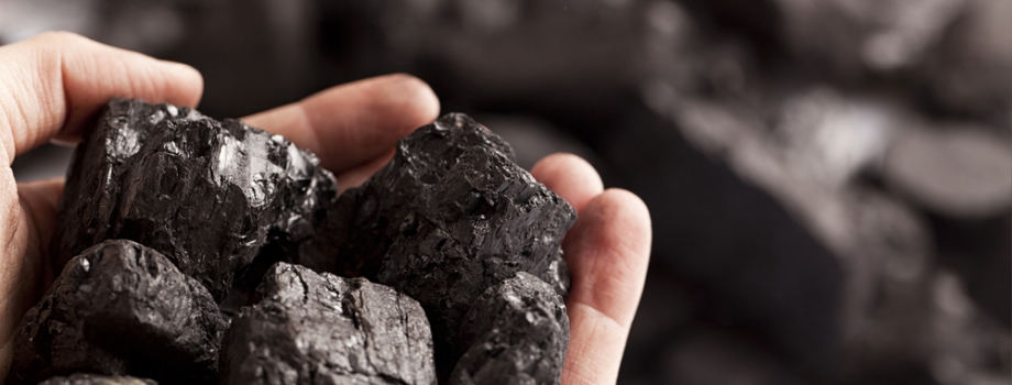 Measuring the Economic Potential of Coal